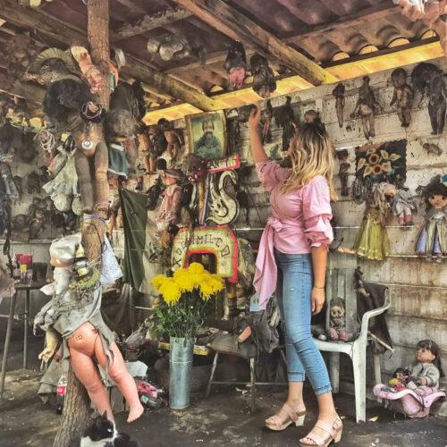 Tour por Persona: Isla de las Muñecas y Museo del Ajolote, Xochimilco